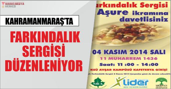 FARKINDALIK SERGİSİ KAHRAMANMARAŞ'TA